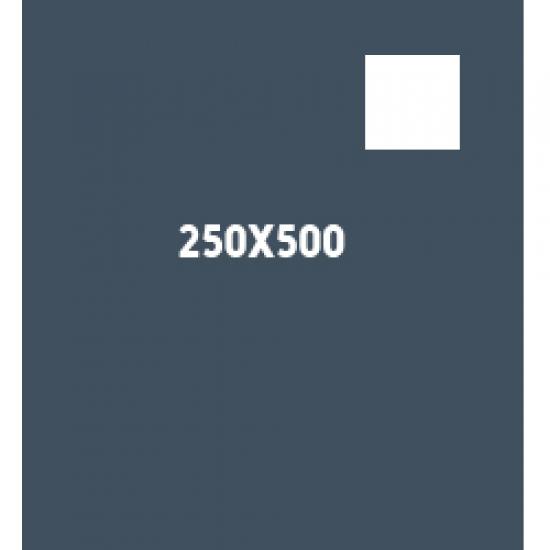 250×500