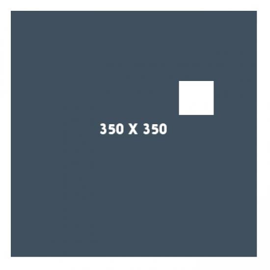 350×350